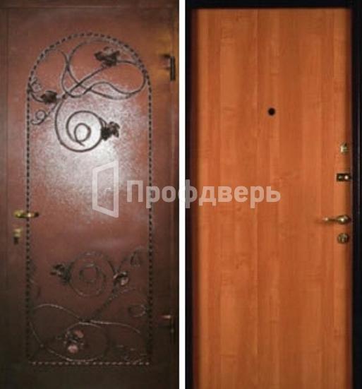 металлические двери с порошковым напылением и ковкой