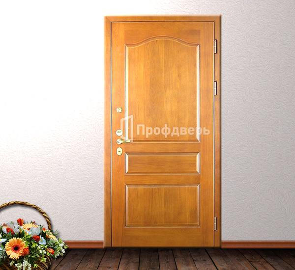 парадные металлические двери в загородных домах
